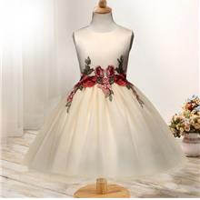Cute Girls' Floral Tulle Dress Princess Dress