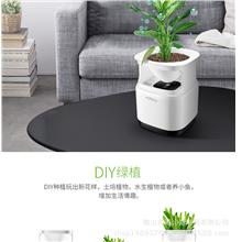 Micro Ecological Desktop Air Purifier Negative Ion Purifier