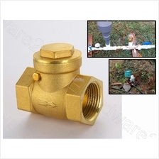 BRASS SWING CHECK VALVE 1/2