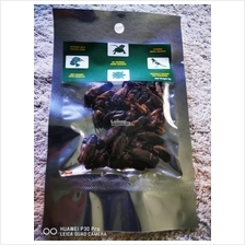 All Natural Dried Crickets 5g (Arowana / Reptile / Turtle / Fish Food)
