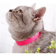 Anti Flea Tick Collar for Pets (Cat)