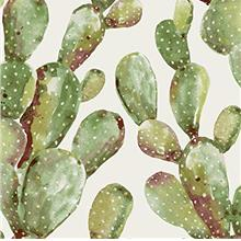 RoomMates Prickly Pear Cactus Peel and Stick Wallpaper