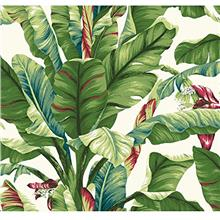York Wallcoverings Tropics Banana Leaf Removable Wallpaper, Green