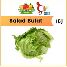 Fresh Iceberg Lettuce / Salad Bulat (1 Pc) Fresh Selected