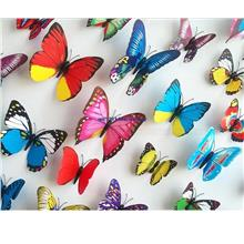 3D Color Butterfly Wall Stickers 12 Set