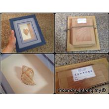 **incendeo** - Seashell Decoration Frame #1