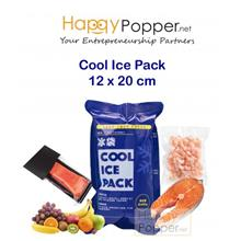 COOL ICE PACK 12 X 20 CM
