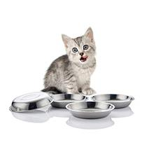 ~ VENTION Global Wansheng Cat Food Dish, Whisker Relief Cat Bowls, Stainless S