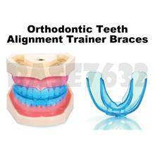 Dental Oral Teeth Orthodontic Braces Alignment Trainer 1765.1