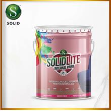 SOLIDLITE PAINT  - White / Standard Colors 5 liter