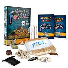 - Original Discover with Dr. Cool Mine for Fossils Dig Kit – Excavate 15 Rea