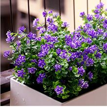 (FROM USA) YXYQR Artificial Flowers Outdoor UV Resistant Fake Plastic Plants O