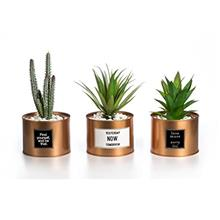 (FROM USA) Opps Mini Artificial Plants Plastic Green Grass Cactus with Special