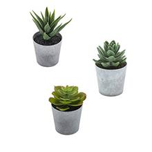 (FROM USA) Artificial Succulents set of 3 mini Realistic Fake Plants with plas