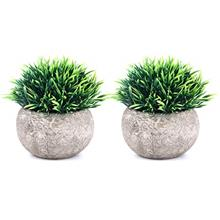(FROM USA) THE BLOOM TIMES 2 Pcs Fake Plants for Bathroom/Home Office Decor, S