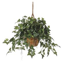 (FROM USA) Nearly Natural 6507 26in. English Ivy Hanging Basket,Green,29 &quot