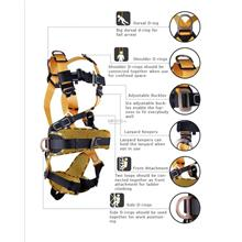 NTR Safety Harness - Full Set with Absorber Lanyard,