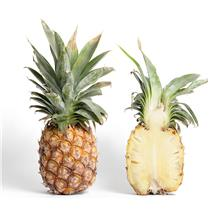 [3333 Durian King] Pineapple MD2 1KG+-