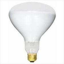 Swimming Pool Pentair Amerlite's Bulb 300W /12V