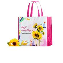Tupperware Big Bag of Sunshine (1)
