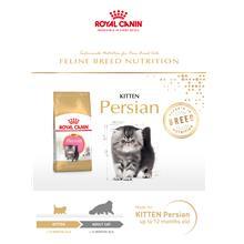 Royal Canin Kitten Persian Cat Food - 2Kg