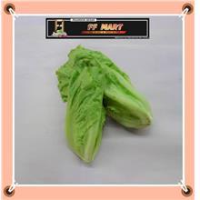 Lettuce King 生菜王 300g+-