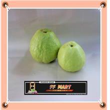 Guava番石榴 600g+-