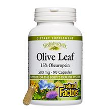 HerbalFactors by Natural Factors, Olive Leaf 500 mg, Supports the Body's Natur
