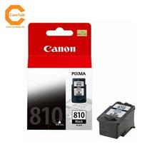 Canon Ink Cartridge PG-810 Black