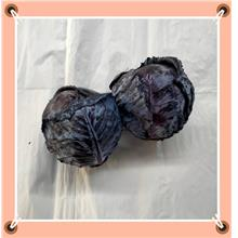 Red Cabbage 1kg+-
