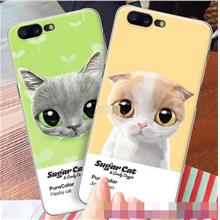 OnePlus 5 A5000 Cat Kitten Design Thin Hard Back Case Cover Casing