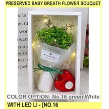 Preserved Baby Breath Flower Bouquet With LED Li - [NO.16 GREEN,WHITE]