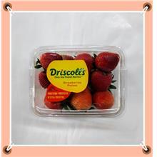 Strawberries草莓 250G+-