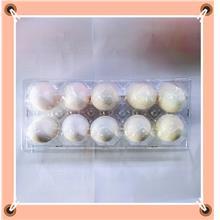 Pearl Chicken Eggs珍珠鸡蛋