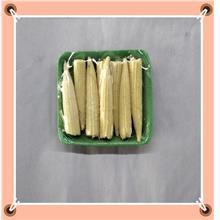 Baby Corn玉米芯 100g+-