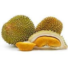 Durianmu - test