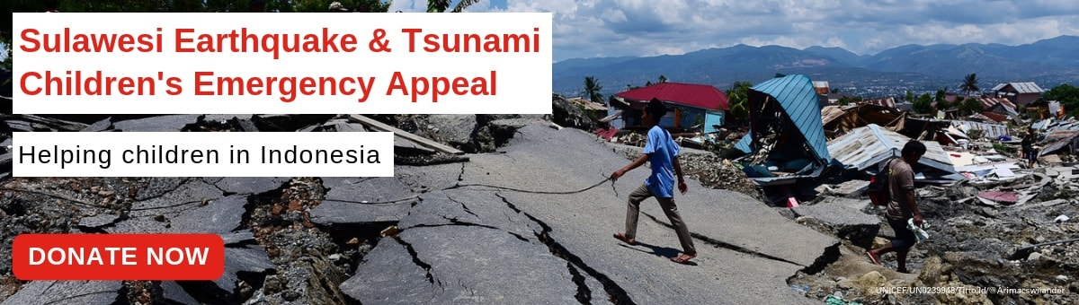 Sulawesi Emergency Appeal